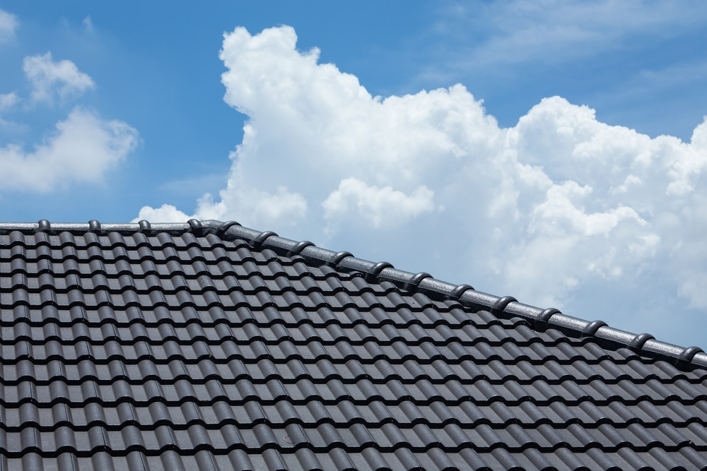 Strongguard Roof Painting Sunshine Coast Primer Seal Roof