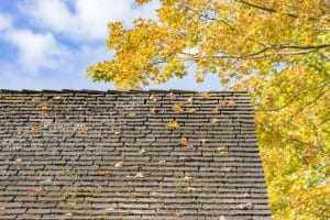 How To Tell If You Need a New Roof for your Home
