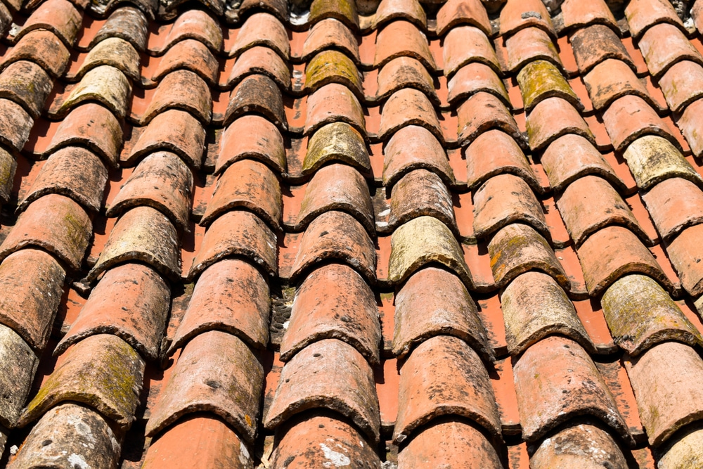 Roof Mould